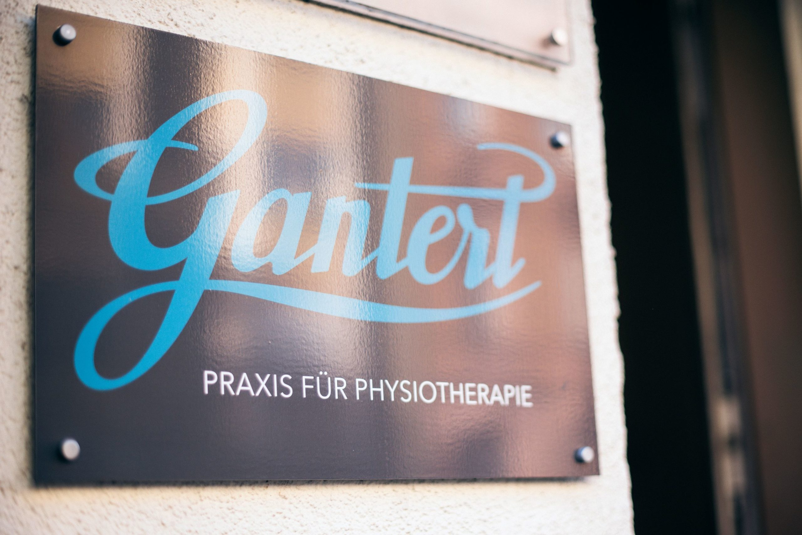 Gantert,PHYSIO_164